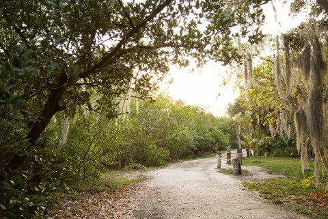 various nature paths throughout island...