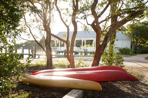Rental Kayaks ready to take guests to nearby Cayo Costa State Park beach.