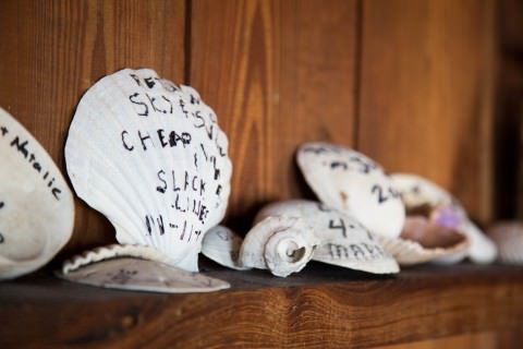Shells left behind by guests of the Dollhouse