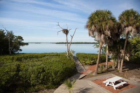 View from the ultra private deck of the Osprey Cottage