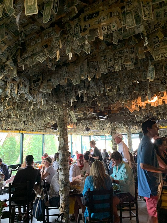 dollars bills hang from the ceiling of cabbage key